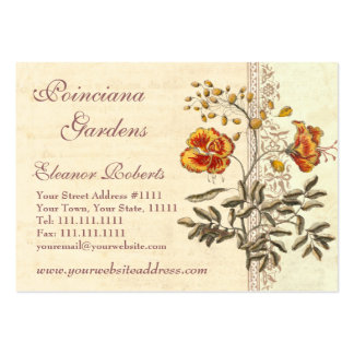 Shabby Elegance Vintage Poinciana Flowers Business Card Templates