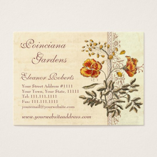 Shabby Elegance Vintage Poinciana Flowers Business Card