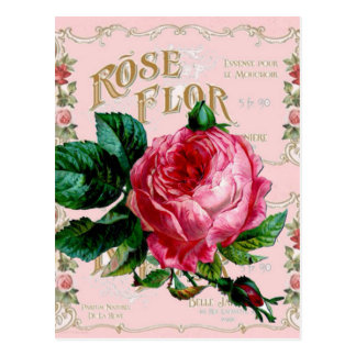 SHABBYCHIC English Rose vintage pink Postcard