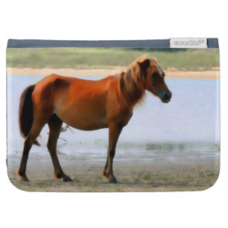 Shackleford Banks Horse Kindle 3 Covers