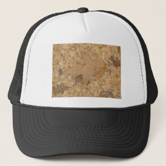 Shade of brown trucker hat