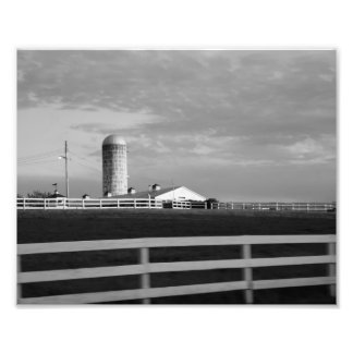 Shaded Skies 10x8 Photographic Print