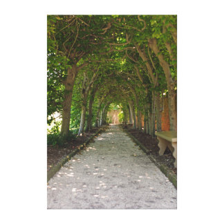 Shaded Walkway Canvas Print