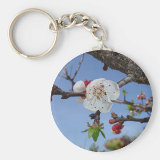 Shades of Apricot Basic Round Button Key Ring
