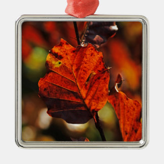 Shades of Autumn (12).jpg Silver-Colored Square Decoration