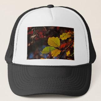 Shades of Autumn (7).jpg Trucker Hat