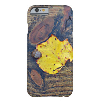Shades of Autumn Barely There iPhone 6 Case
