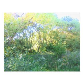 Shades of green photo