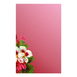 Shades of Pink With Pink and White Posies Custom Stationery