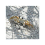 Shadow crab picture stretched canvas print