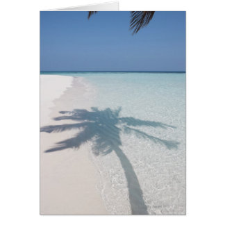 Shadow of a palm tree on a deserted island beach card