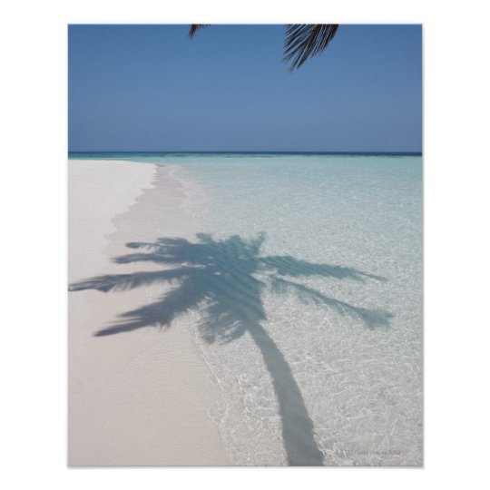 Shadow of a palm tree on a deserted