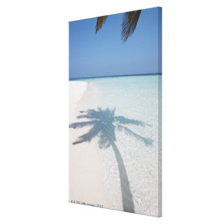 Shadow of a palm tree on a deserted island beach stretched canvas print