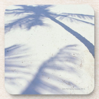 Shadow of Palm Tree 2 Coaster