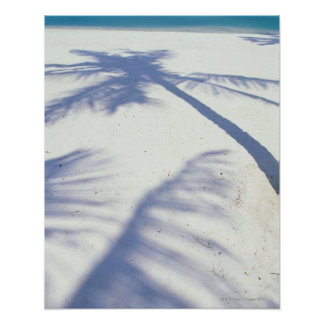 Shadow of Palm Tree 2 Poster