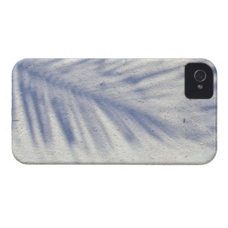 Shadow of Palm Tree 3 iPhone 4 Case-Mate Cases