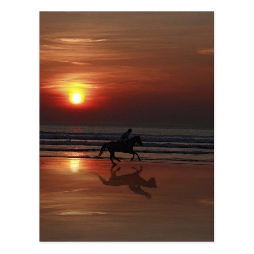 shadow racing postcard
