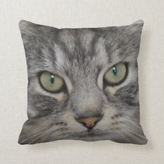 Shadow Silver Tabby Persian Cat Polyester Cushion