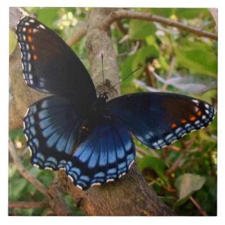 Shadowed Blue Butterfly Large Square Tile