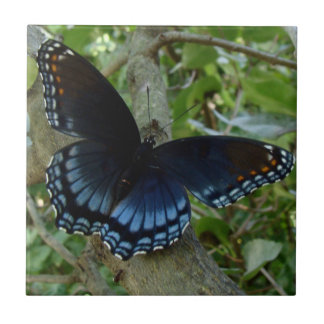 Shadowed Blue Butterfly Small Square Tile