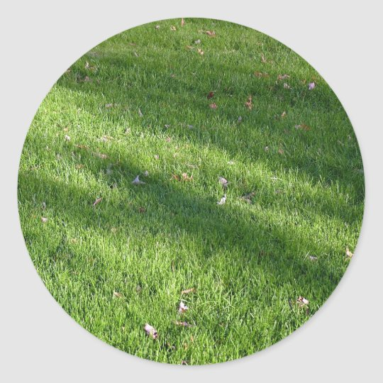 Shadows in the Grass Classic Round Sticker