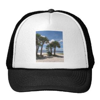 Shady Palms Hat