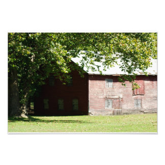 Shady Red Barn 19 x 13 Photographic Print