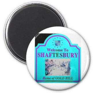 Shaftesbury Torquise Pink Fridge Magnet
