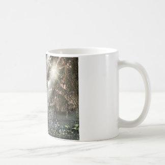 Shafts of Sunlight Coffee Mugs