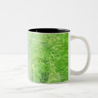 Shafts of Sunlight Two-Tone Mug