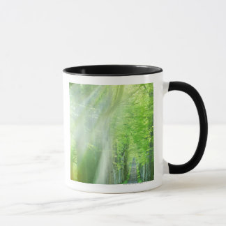 Shafts of Sunlight Mug