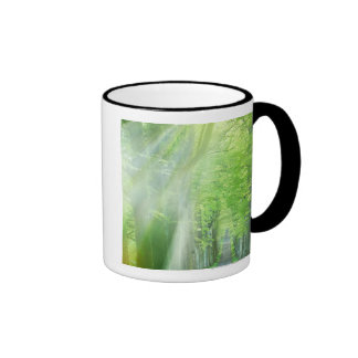 Shafts of Sunlight Coffee Mug