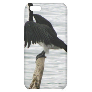 Shag Drying Wings Cover For iPhone 5C