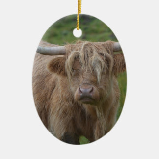 Shaggy Blonde Highland Cow Ceramic Oval Decoration