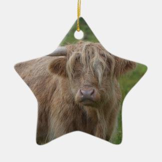 Shaggy Blonde Highland Cow Ceramic Star Decoration