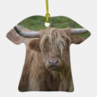 Shaggy Blonde Highland Cow Ceramic T-Shirt Decoration