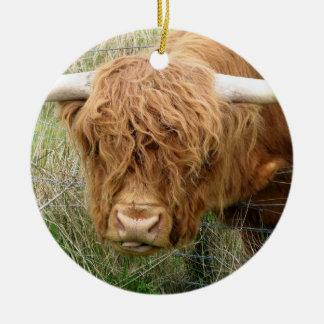Shaggy Highland Cow Christmas Ornament