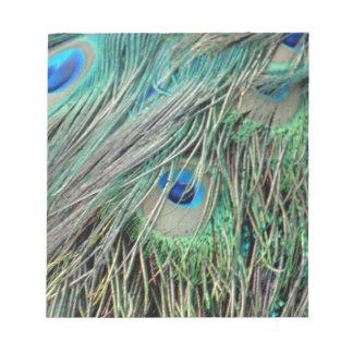 Shaggy Peacock Eye Feathers Notepad