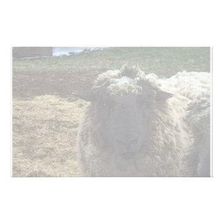 Shaggy Sheep Stationery