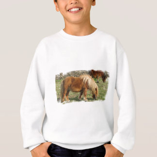 Shaggy Shetland Pony Children's Sweatsihrt Sweatshirt