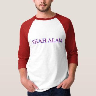 Shah Alam Top