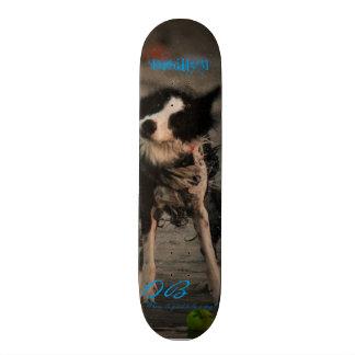 Shake it off skate board