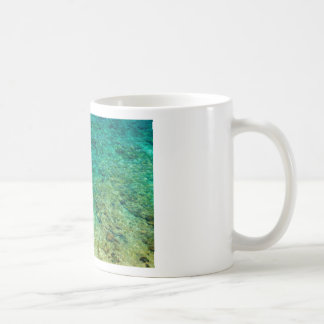 Shallow clear water with coral mugs
