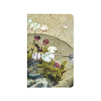 Shallow Pond Journal
