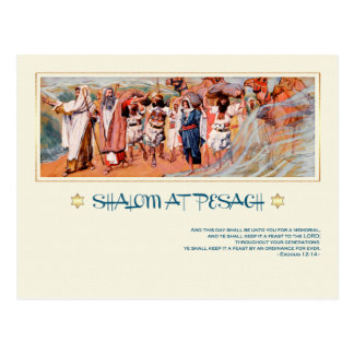 Shalom at Pesach.Fine Art Passover Postcards