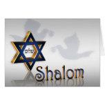 Shalom Hanukkah greeting