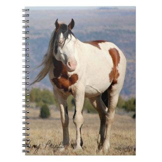 Shaman Spiral Photo Notebook