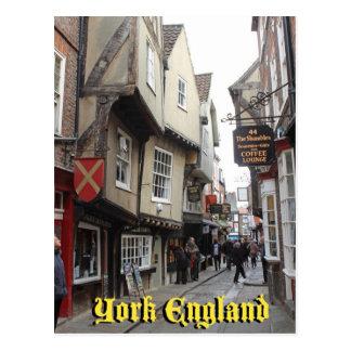 Shambles, York Postcard