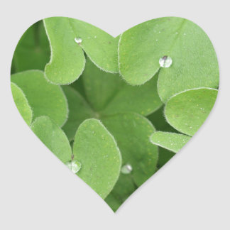 Shamrock Clover Leaves Heart Sticker
