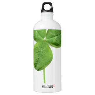 Shamrock clover trefoil trifolium leaves water bottle